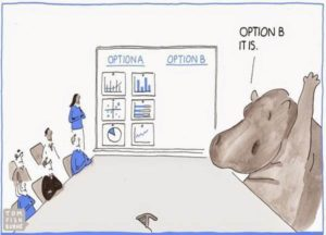 hippo-decision-making